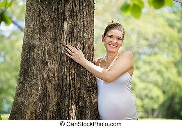 retrato, embarazada, madre, mujer, abrazo, árbol, parque,...