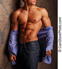 retrato, muscular, hombre, moda, camisa
