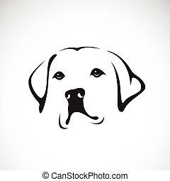 retriever), pet., pies, animals., tło, wektor, head(labrador, biały