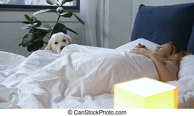 Retriever waking up female owner in the morning - Cute...