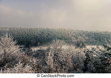 retro beautiful mountain view from above forest winter in Ukraine