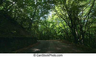 Retro car on winding mountain road through a forest