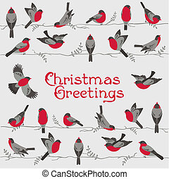 retro, cartão natal, -, inverno, pássaros, -, para, convite, parabéns, em, vetorial