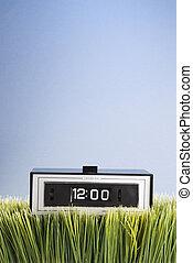 Retro clock in grass.