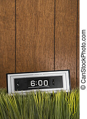 Retro clock in grass.