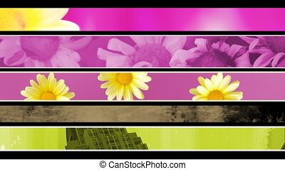 Retro Flowers and Grunge Lower 3rd  - Looping Lower Thirds