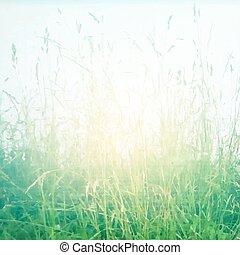 Retro Grass Poster