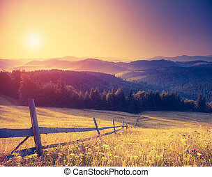 retro mountain landscape - Fantastic sunny hills under ...