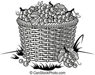 retro, nero, cesto, uva bianca