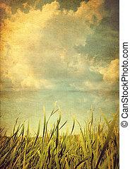 Retro photo meadows with grass