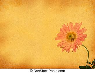 retro, plano de fondo, con, flor, motivo