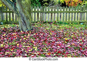 retro, sceneri, hos, en, træ, ted, efterår forlader, på,...
