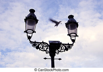 retro street lamps and seagull in motion