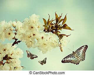 Retro styled image of butterflies in an orchard