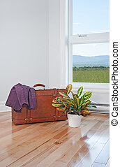 Retro suitcase and bright plant in empty room