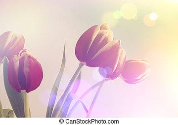 retro, tulips