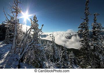 retroilluminato, alpino, scena
