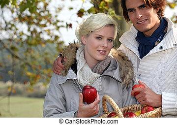 reunião, feliz, parque, par, maçãs