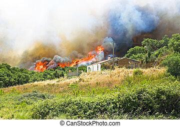 reusachtig, portugal, huizen, vuur, dreigt, bos