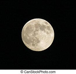 reusachtig, volle maan, ertussen, van, een, nacht