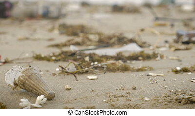 Revealing a large amount of trash littering the beach