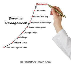 revenu, diagramme, gestion