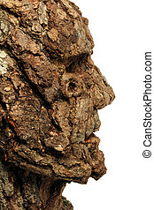 A tree man sculpture created from oak bark by Adam Long.