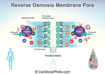 Reverse Osmosis system Diagram. Illustration. - Reverse...