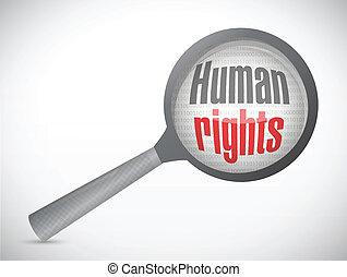 revisione, umano, ingrandire, illustrazione, diritti
