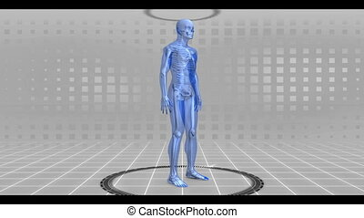 Revolving walking and running human figure with chroma keys on grey grid digital background