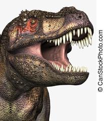 rex tyrannosaurus, closeup