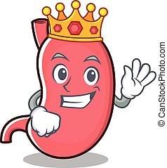 rey, carácter, estómago, caricatura, mascota