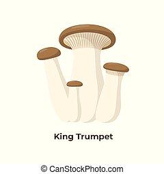 rey, plano, aislado, ilustración, hongos, plano de fondo, ...
