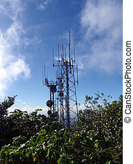RF Tower in the Rain Forest
