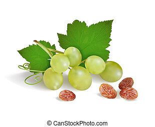 ???????? RGB - grapes and raisins on a white background....