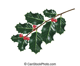 ???????? RGB - Holly Christmas decorations. Vector...