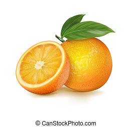 ???????? RGB - Orange whole and slices of oranges. Vector...