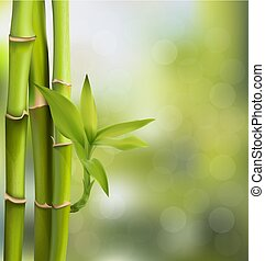 RGB - Vector illustration of Green bamboo trees background...