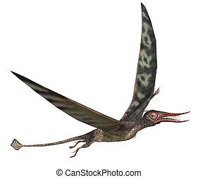 Rhamphorhynchus Dinosaur - The Rhamphorhynchus dinosaur...