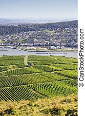 Rheingau Riesling Vineyards near the Niederwalddenkmal and River Rhine