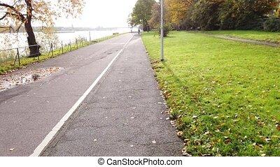 rhine, embankment., dróżka, rower, rider., jeżdżenie, pov