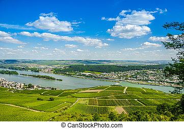 Rhine river and green vineyards near Bingen am Rhein