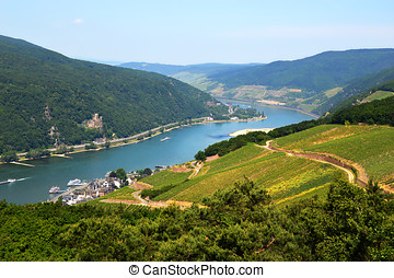 Rhine valley in Rudesheim - Amazing view over the river...