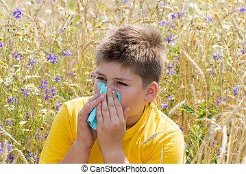 rhinitis, niño, pradera, alérgico
