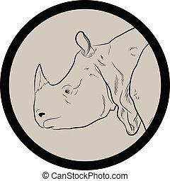 Rhino Face Closeup Vector