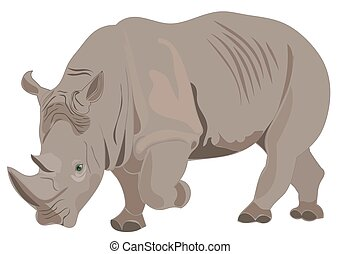 Rhino illustration raster - Isolated rhino illustration