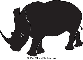 Rhino on a white background