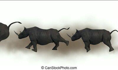 rhino running with green background.