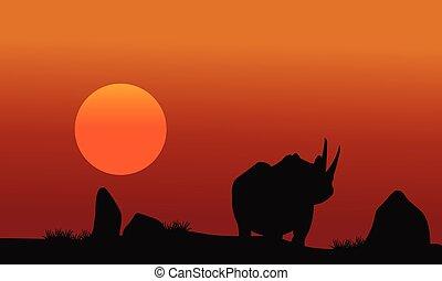Rhino silhouette walking in savanna