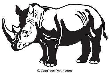 rhinocéros, blanc, noir